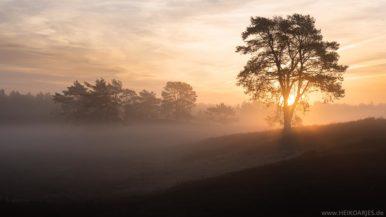 Sonnenaufgang in der Senne